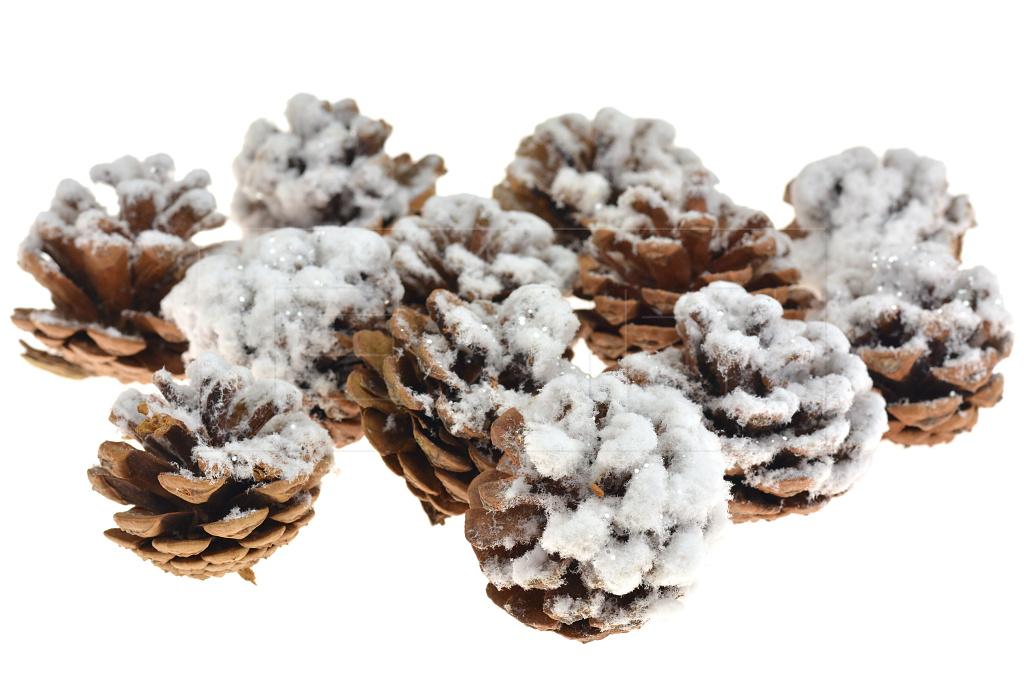 Vánoční dekorace FLORA (4-5cm) Set 12ks - Zasněžená šiška