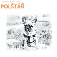 Polštář - Buldoček na skejtu
