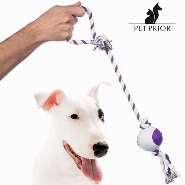 Sznurek z Piłką dla Psów Pet Prior
