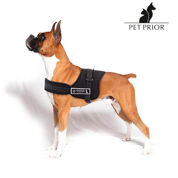 Regulowane Szelki dla Psa Pet Prior - L