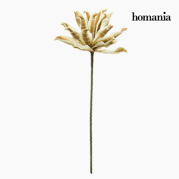 Květina Pěna Bílý Kaštanová by Homania