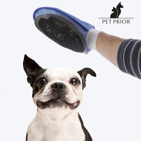 Česací Rukavice pro Domácí Zvířata Pet Prior
