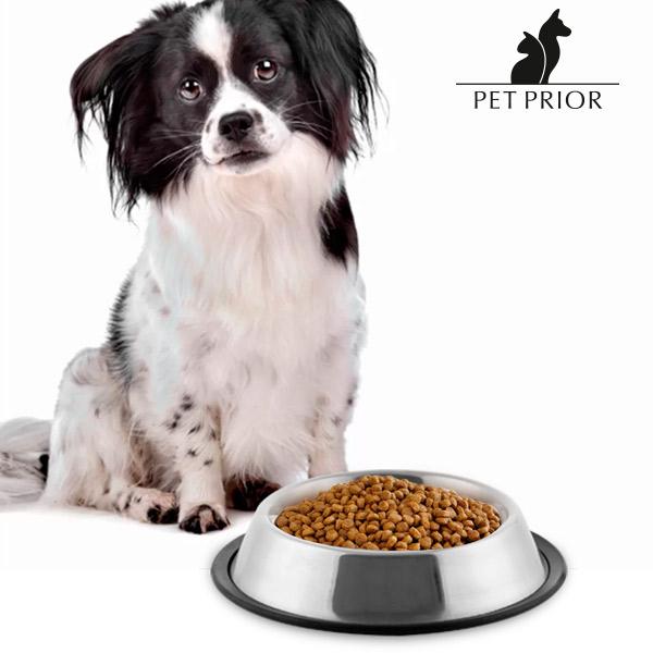 Korytko dla Psa Pet Prior