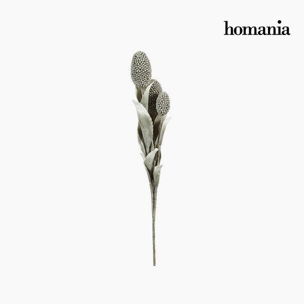 Kwiat Piana Szary - Enchanted Forest Kolekcja by Homania