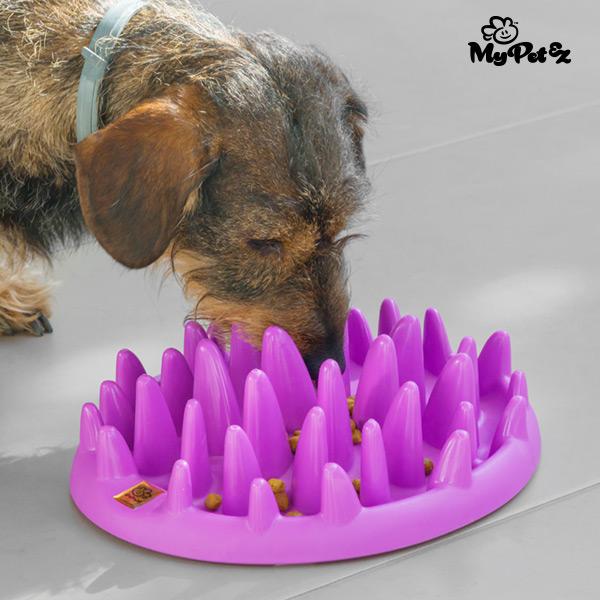 Interaktywna Miska dla Zwierząt Slow Food Bowl My Pet Ez