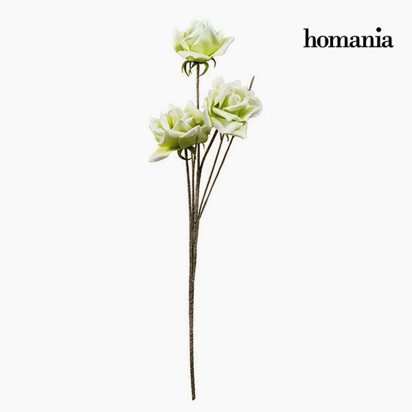 Květina Pěna Zelená by Homania