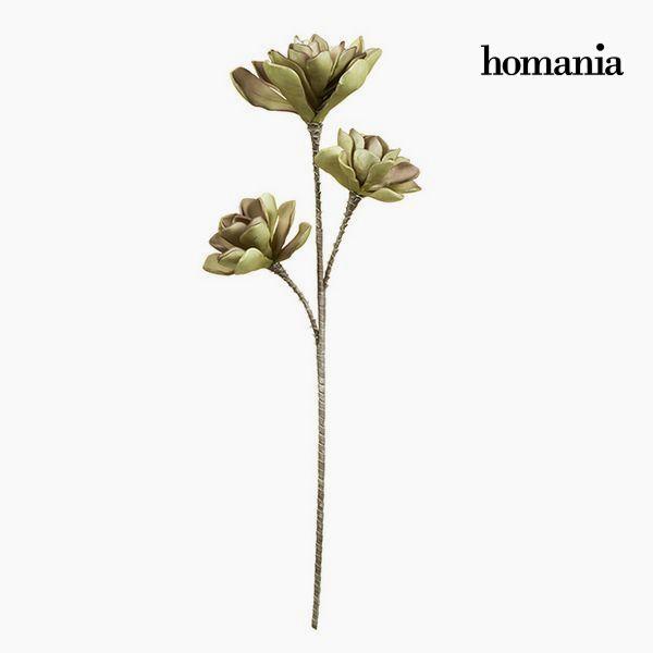 Květina Pěna Fialový Zelená by Homania