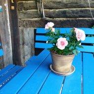 Keramický květináč - klasik