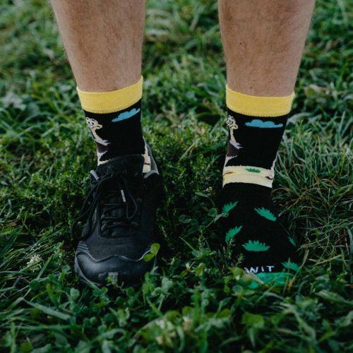 Ponožky - Pštros p2