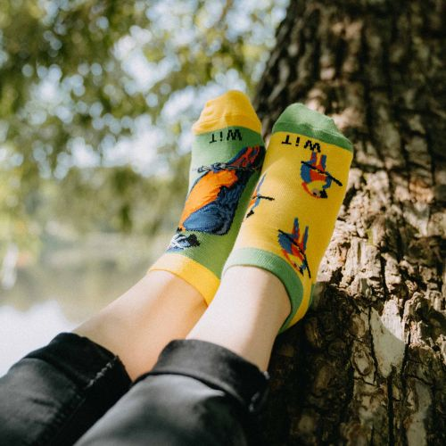 Ponožky - Papagáj nízke p2