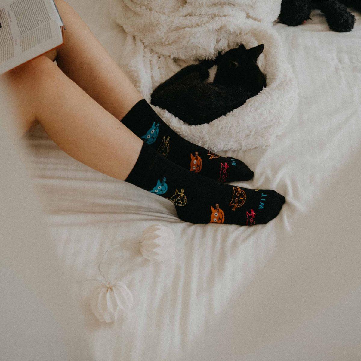 Ponožky - Mačky farebné