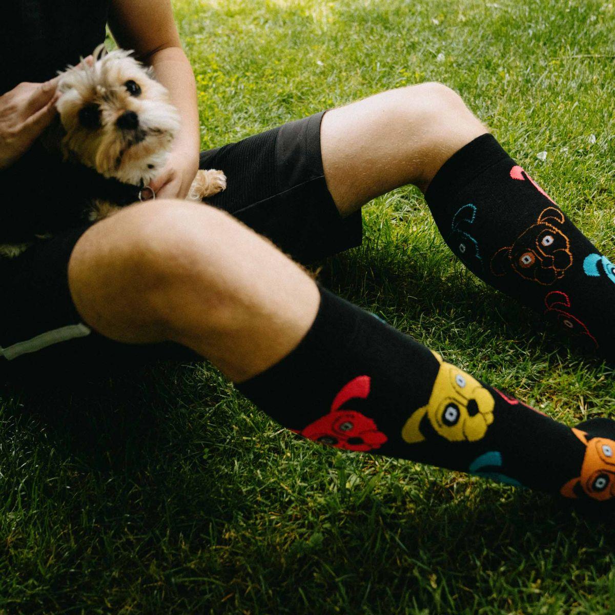 Șosete pentru genunchi - Caine negru p2