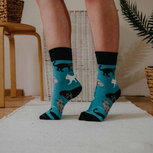 Socken - Katzen - Minze p1