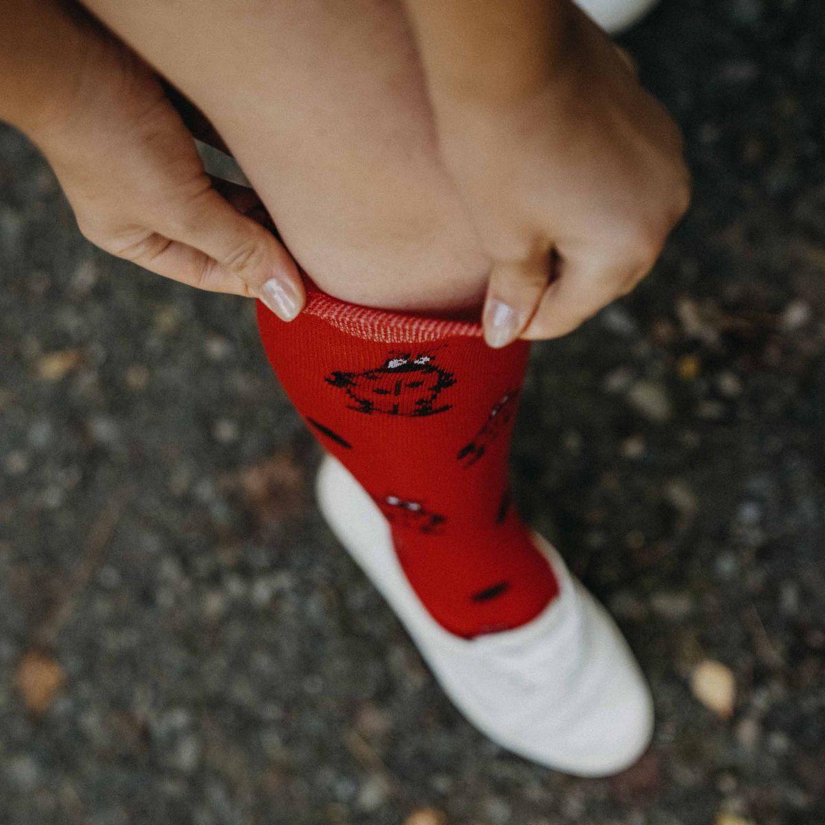 Șosete pentru genunchi - Gărgăriță p2