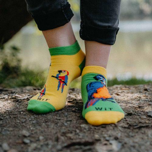 Ponožky - Papagáj nízke p3