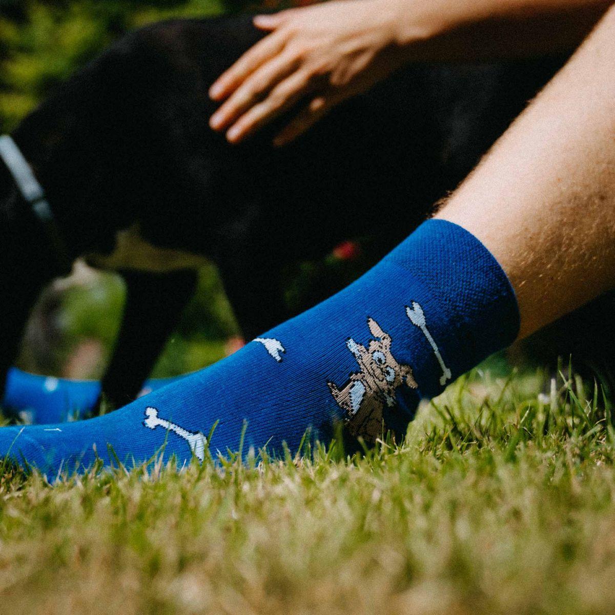 Șosete - Câine p5