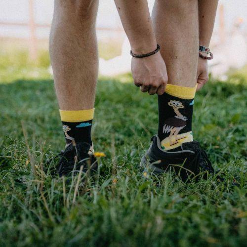 Ponožky - Pštros p3
