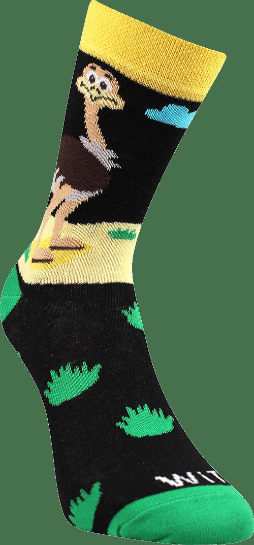 Ponožky - Pštros p4