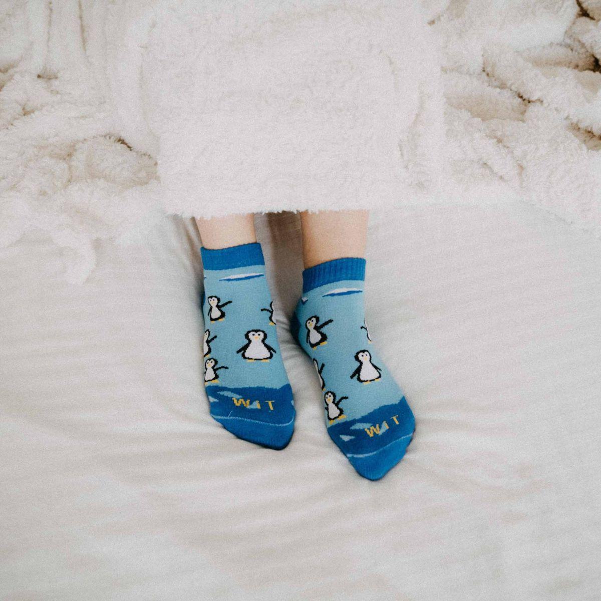 Ponožky - Tučňák nízké p3