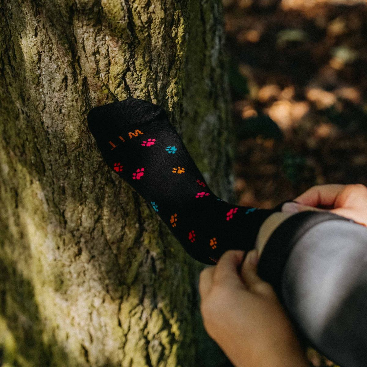 Ponožky - Labka 1 p5