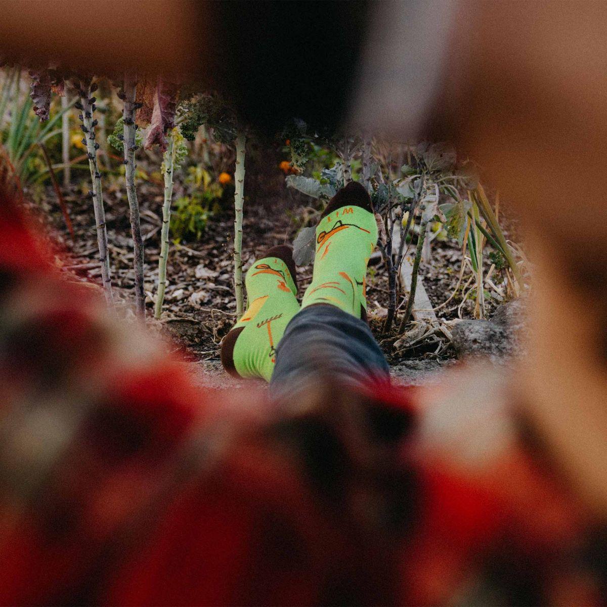 Ponožky - Záhradkár p3