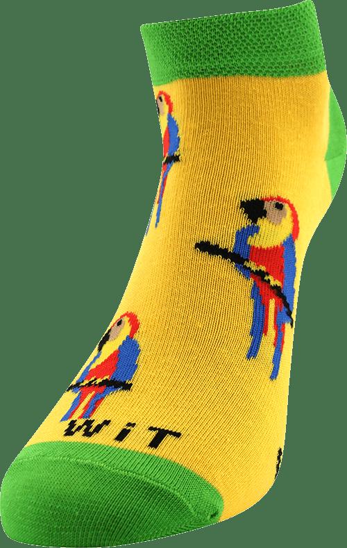 Ponožky - Papagáj nízke p5