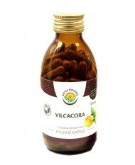 Vilcacora - Uncaria tomentosa kapsle 120 ks