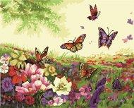 Malování podle čísel - motýlci