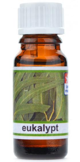 Vonná esence 10 ml - Eukalypt