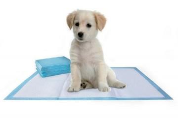 Toaletní podložka pro psa 60x60cm, 10 kusů
