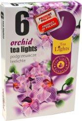 Čajové svíčky 6 kusů –  Orchidej