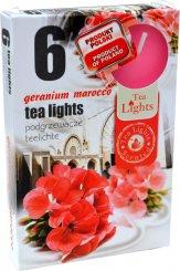 Lumânare tabletă 6 bucăți –  Pelargonie de Maroc