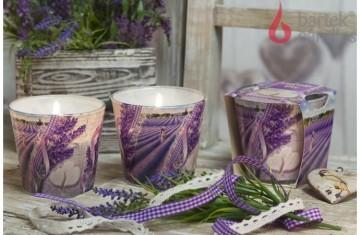 Vonná svíčka ve skle – Polibek levandule – svěží levandule, 115g