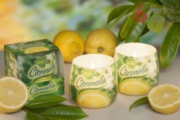 Vonná svíčka ve skle - Citronella, 100g