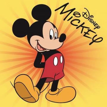 Magický ručníček Mickey Star 30/30
