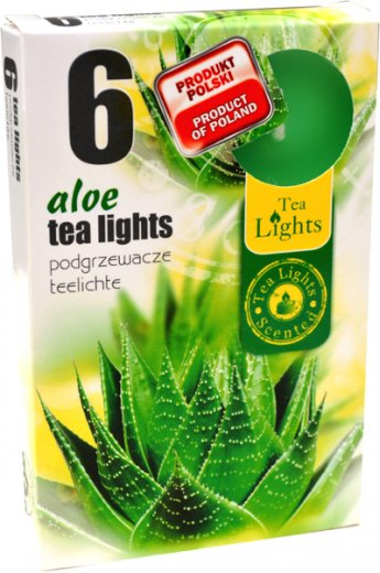 Čajové svíčky 6 kusů –  Aloe