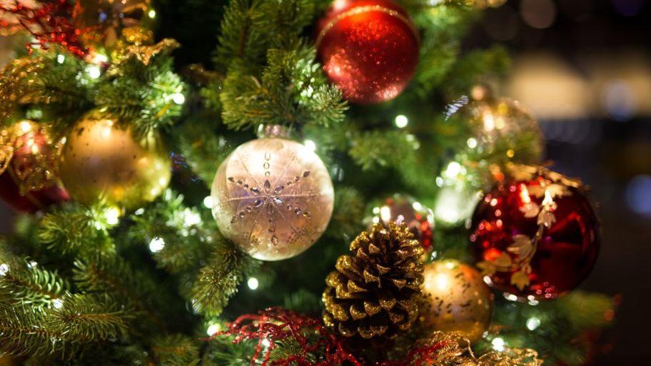 Garance doručení zboží do Vánoc 2018