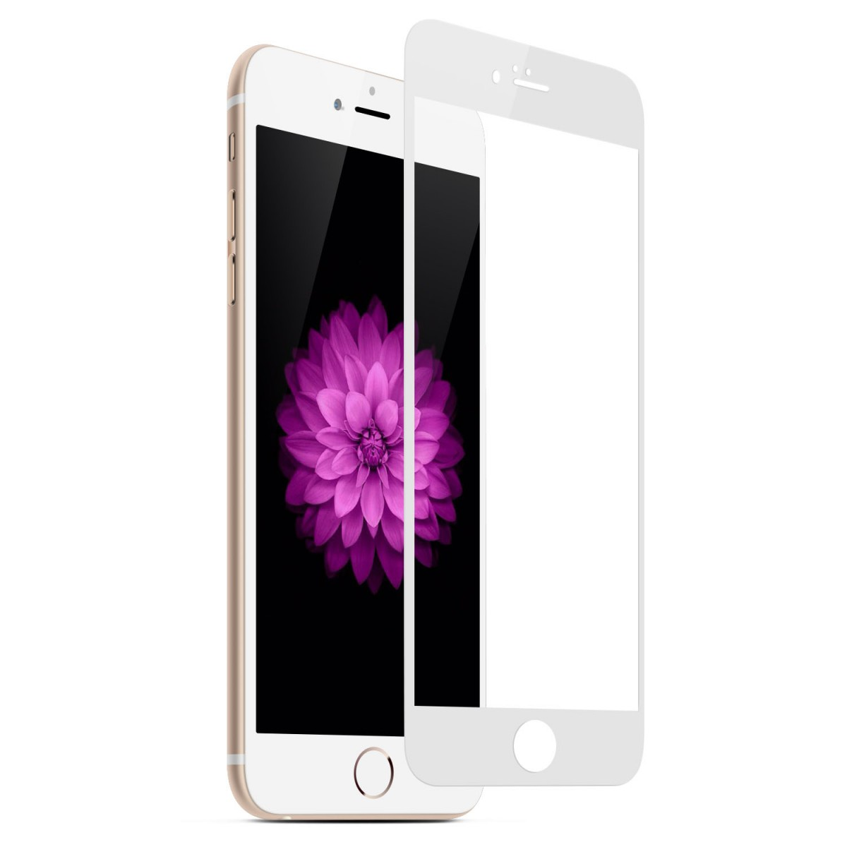 Tvrzené sklo FullCover na iPhone 6s / 6 (bílé)