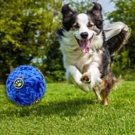 Interaktívna loptička pre psov