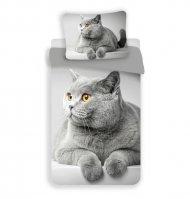 3D Povlečení Grey cat micro 140/200, 70/90